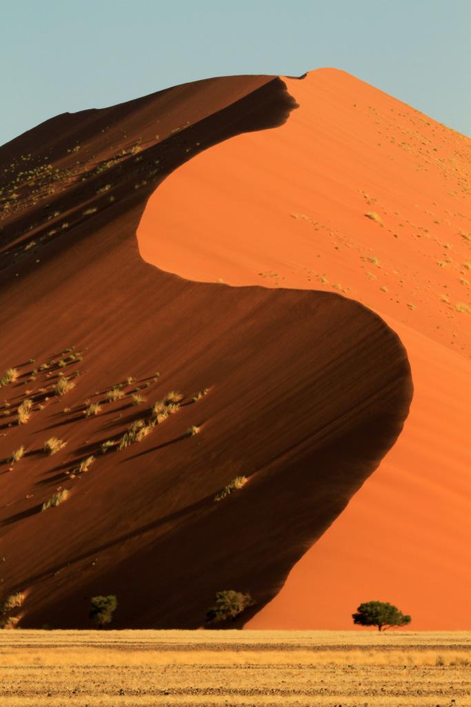 Dunes 45 x.jpg