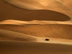 Dunes 1.jpg