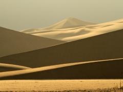 Dunes 27 x.jpg